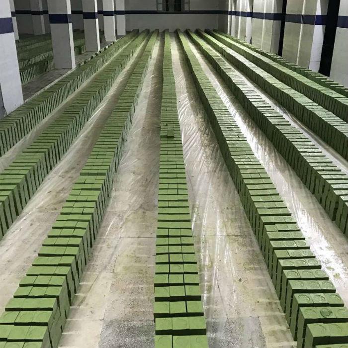 Aleppo Najel BIO vloeibare olijf zeep 5% pompfles 500ml