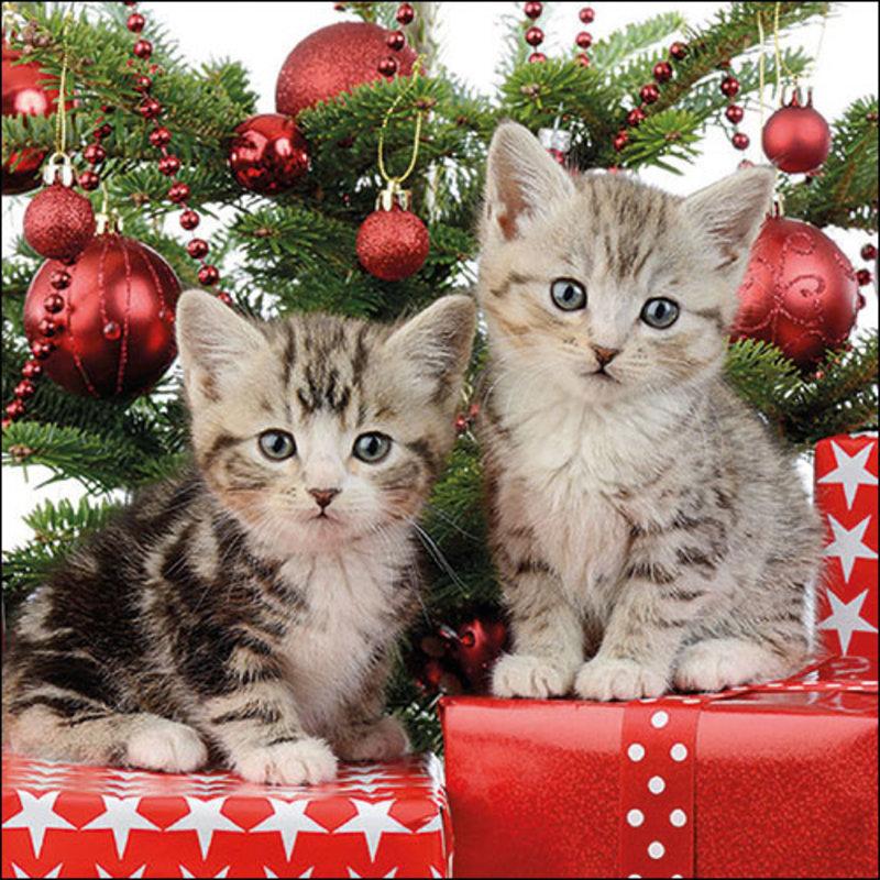 SERVIET 33X33 CHRISTMAS KITTEN