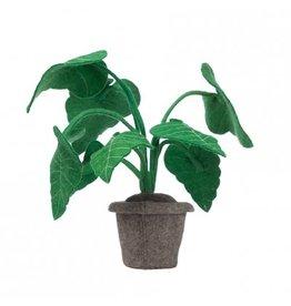 Kidsdepot Alcocasia Vilten Deco Plant