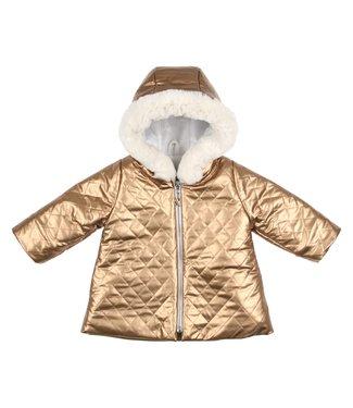 Gymp Golden Coat