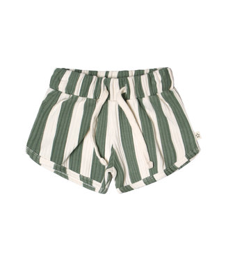 Your Wishes Bold Stripes Shorts Old Green