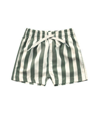 Your Wishes Bold Stripes Swim Short Old Green