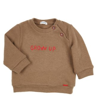 Gymp Pullover Sweater Grow Up Camel