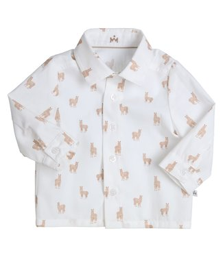 Gymp Shirt Alpaca