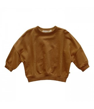 Your Wishes Nio Sweater Solid Spice