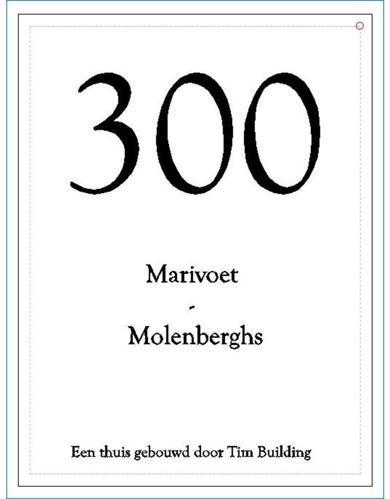 Naambord in blauwsteen ingekleurd 40x30 : Marivoet - Molenberghs