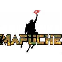 Mapuche BIO-HANF GETRÄNK MIT YERBA MATE mit XUCKER LIGHT