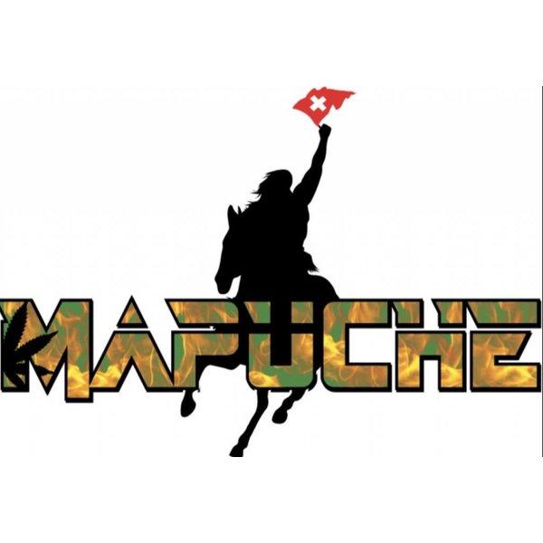 Mapuche  CH / EU-BIO certified MATE & HANF TEE