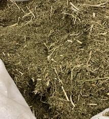 Biomasse mit 12% CBD