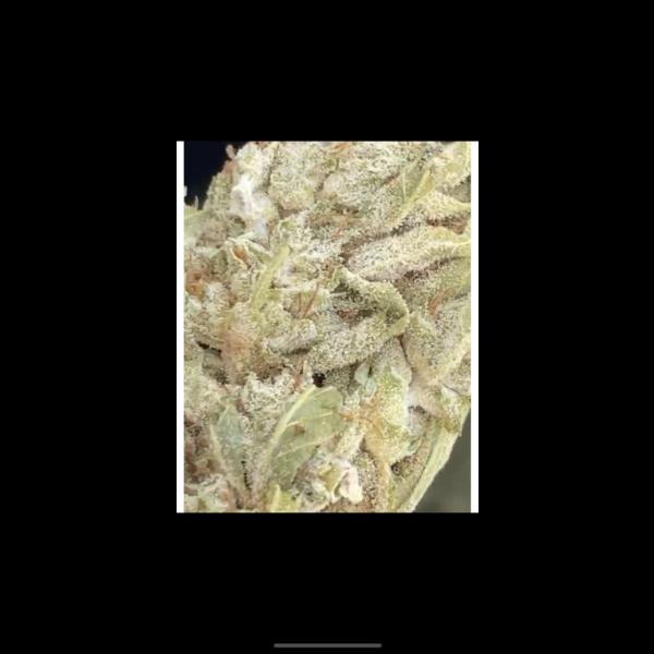 WHITE CBG_Blüten 0.12%THC 12%CBG (Glashouse)