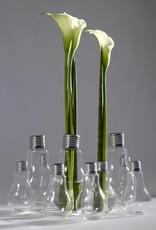 Serax GeantBulb Edison Vase Medium