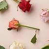 Iedere week een andere kleur rozen thuisbezorgd