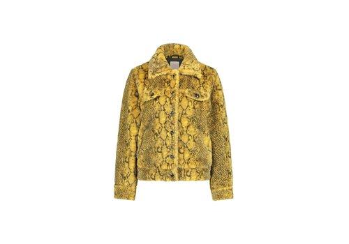 Mimi Coat - Yellow Snake Print