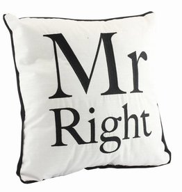 Mr. Right Cushion