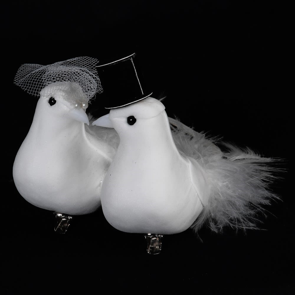 Mr & Mrs Clip Bird Couple