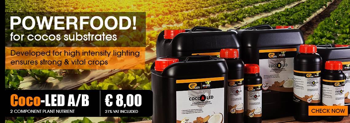 Coco-LED-ENG