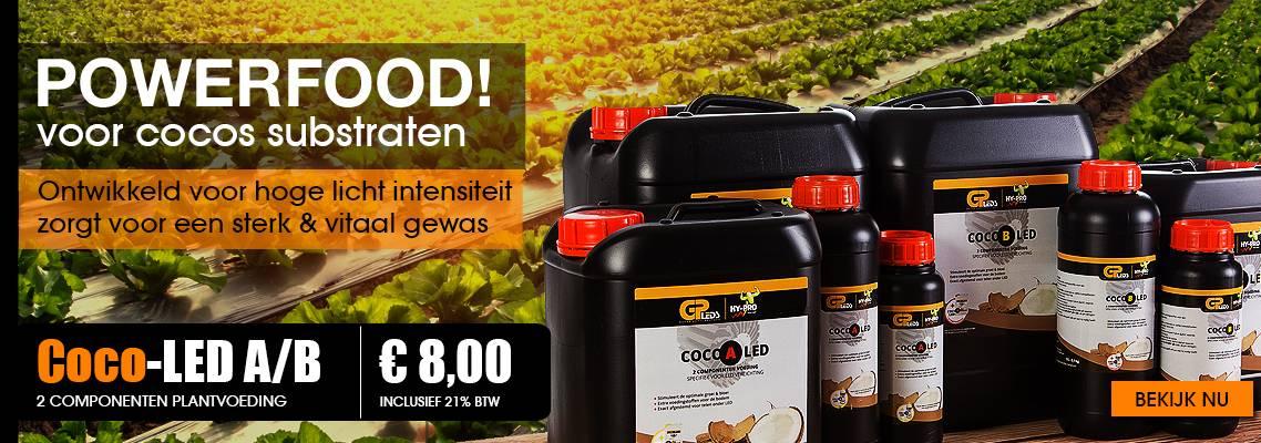 Coco-LED-NL