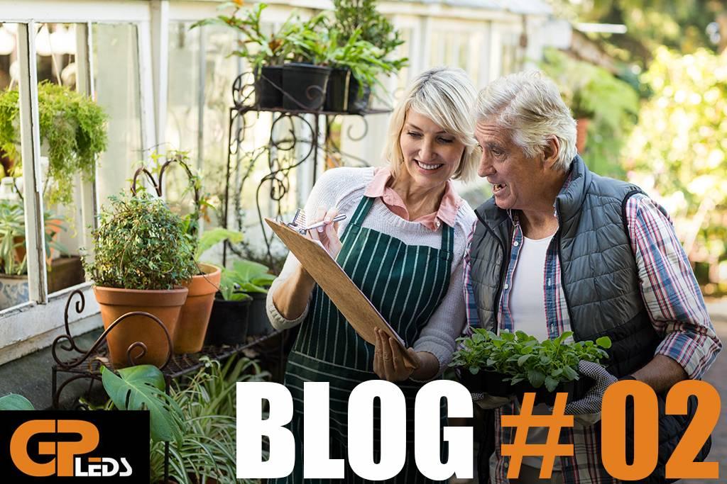 Blog #2 - Je eigen voedsel telen kan iedereen!