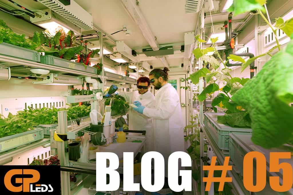 Blog #5 - 5 Tips voor kweken met LED verlichting