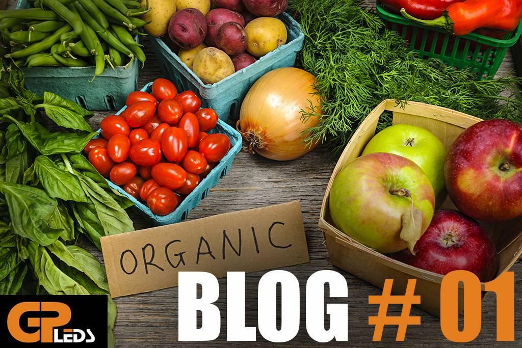 Blog #1 - De wetenschap achter het indoor kweken van voedsel
