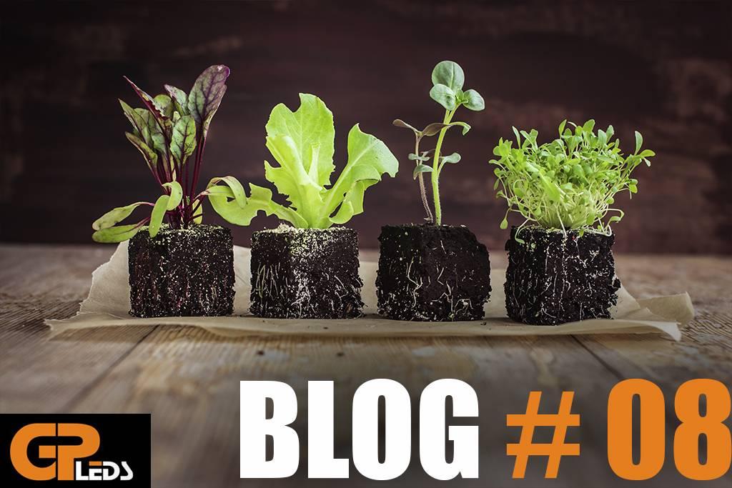 Blog #8 - Wist je dat LED verlichting de natuur kan nabootsen?