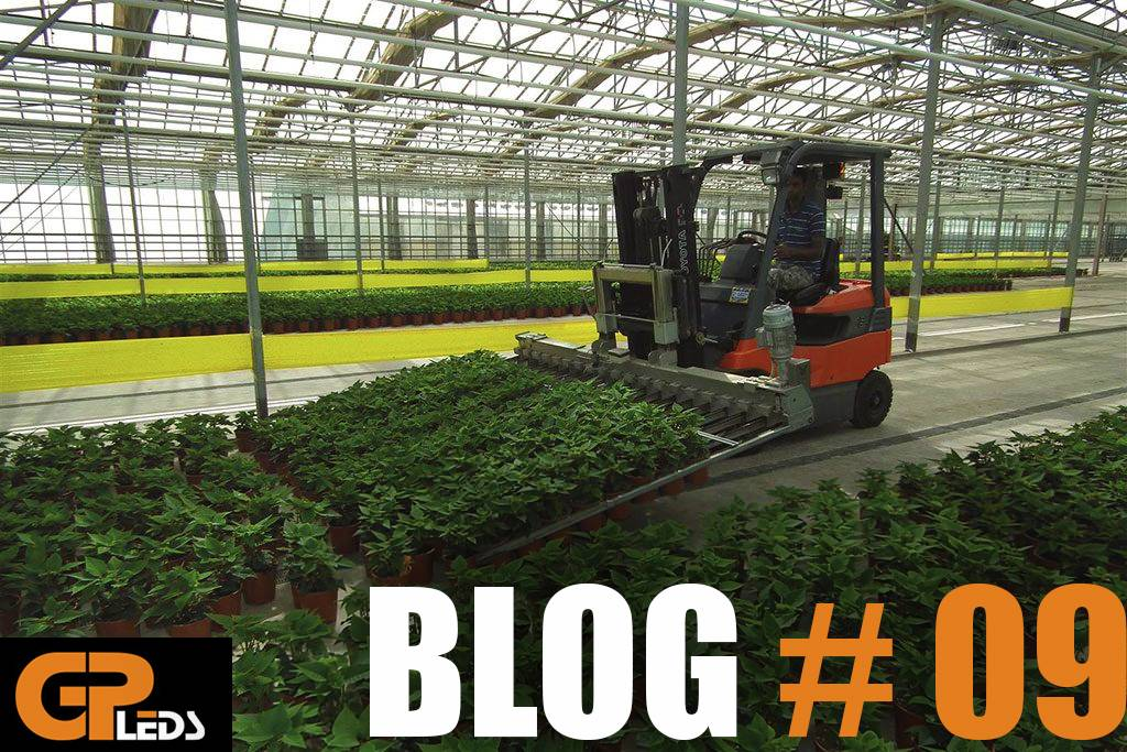 Blog #9 - Hoe een succesvolle commerciële kwekerij te bouwen