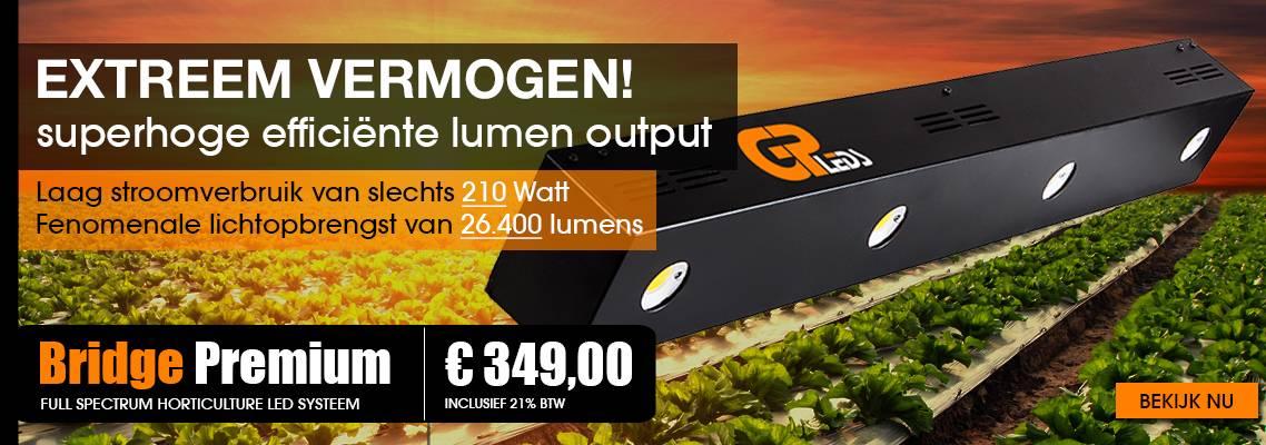 Bridge-Premium-NL