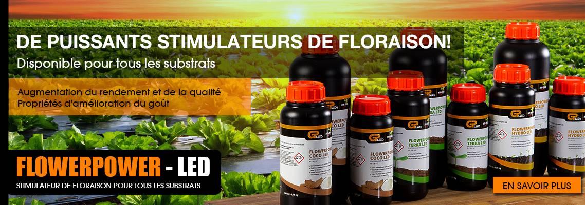 Flowerpower - FR