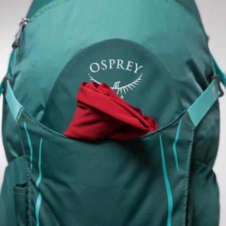 Osprey Osprey Hikelite 26l wandelrugzak - Shiitake Grey