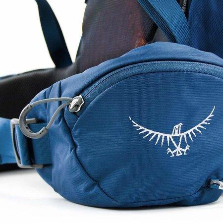 Osprey Kestrel 48l backpack - Picholine Green
