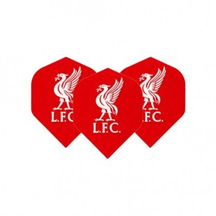 Voetbal flights - Liverpool