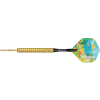 Dartshopper.nl Wayne Mardle Hawaii 501 90% Gold Soft Tip