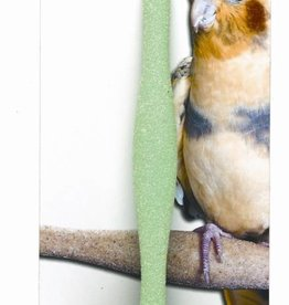 JW Small Bird Sand Perch