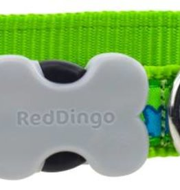 Red Dingo Turquoise Stars on Lime Green Dog Collar