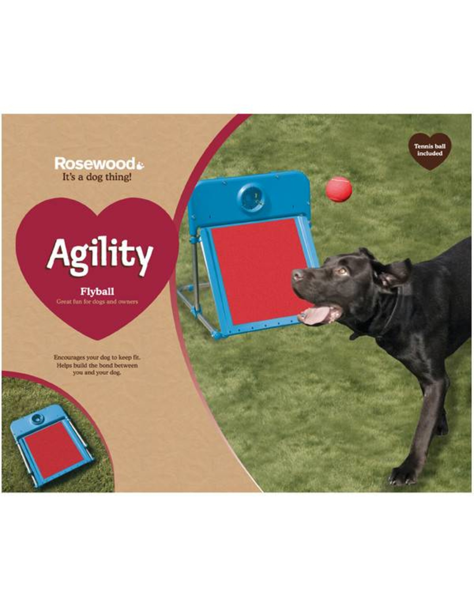 Rosewood Dog Agility Flyball