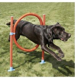Rosewood Agility Hoop Jump