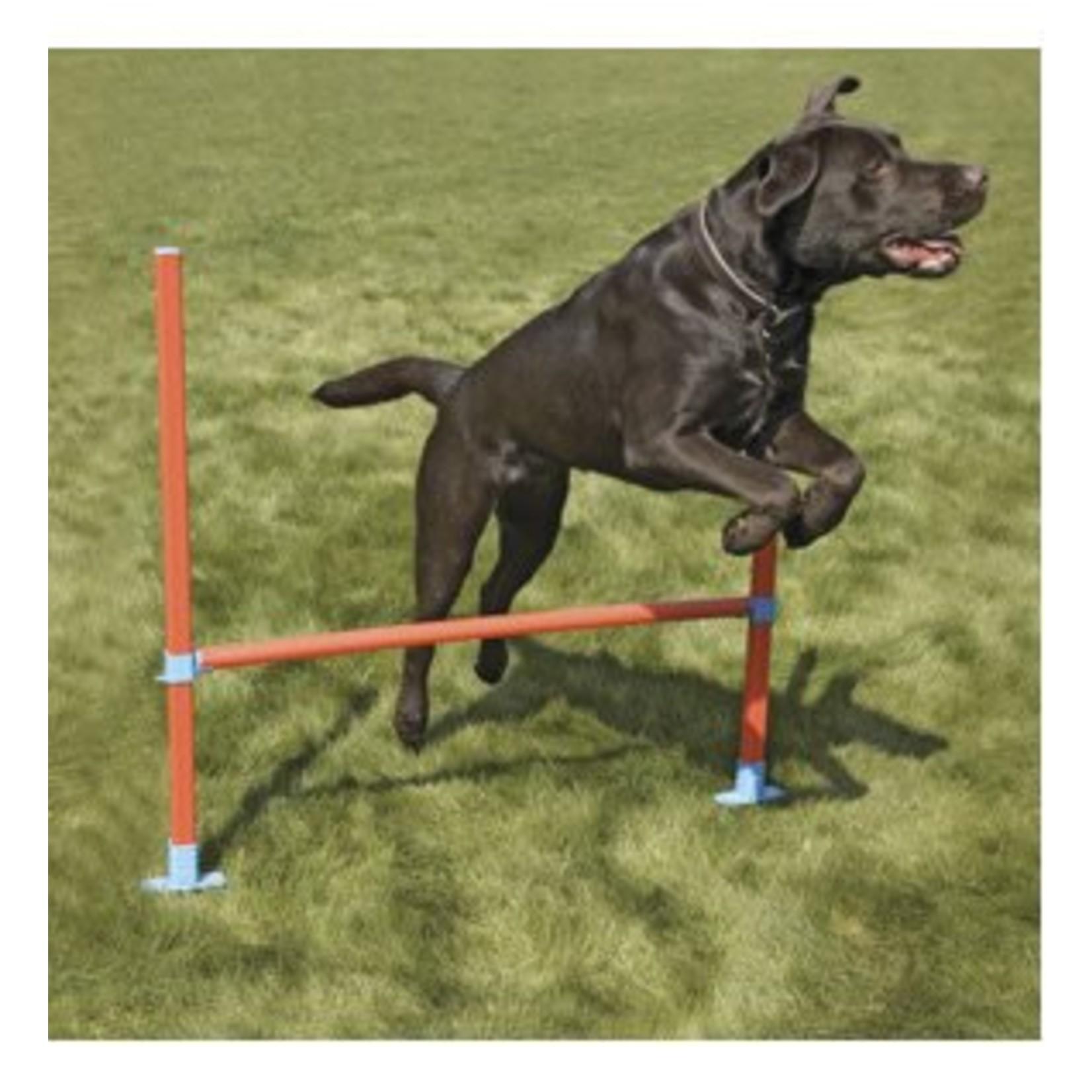 Rosewood Dog Agility Hurdle