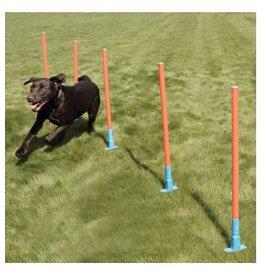 Rosewood Dog Agility Slalom Weaving Poles