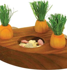 Rosewood Boredom Breaker Small Animal Carrot Toy n Treat Holder