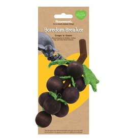 Rosewood Boredom Breaker Grape 'n' Gnaw Small Animal Toy
