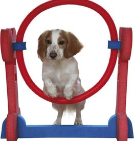 Rosewood Small Dog Hoop^