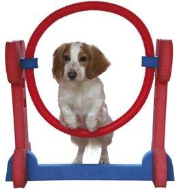 Rosewood Small Dog Agility Hoop^
