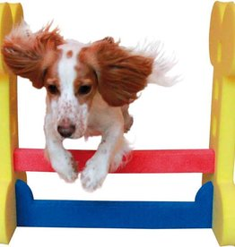Rosewood Small Dog Agility Hurdle^