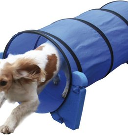 Rosewood Small Dog Tunnel