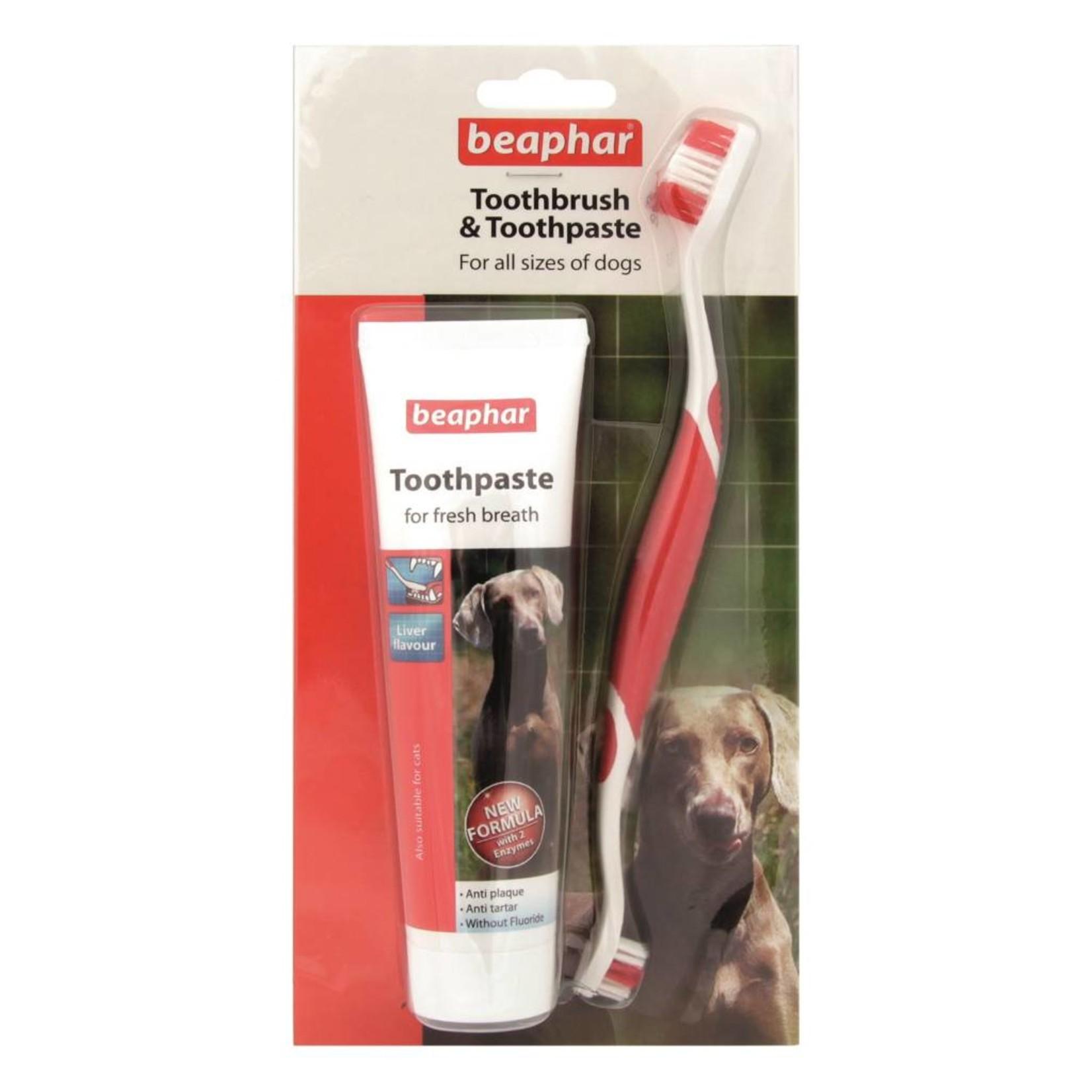 Beaphar Dental Kit for Dogs, 100g