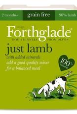 Forthglade Just Lamb Grain Free 2 Months + Wet Dog Food, 395g