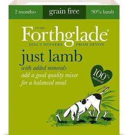 Forthglade Just Lamb Grain Free Wet Dog Food 395g