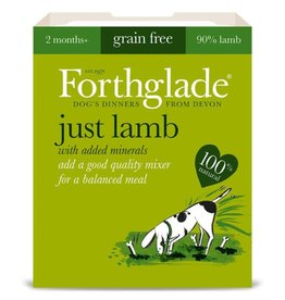 Forthglade Just Lamb Grain Free 2 Months + Wet Dog Food, 395g