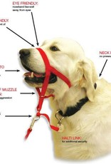 Company of Animals Halti Dog Head Collar, Red