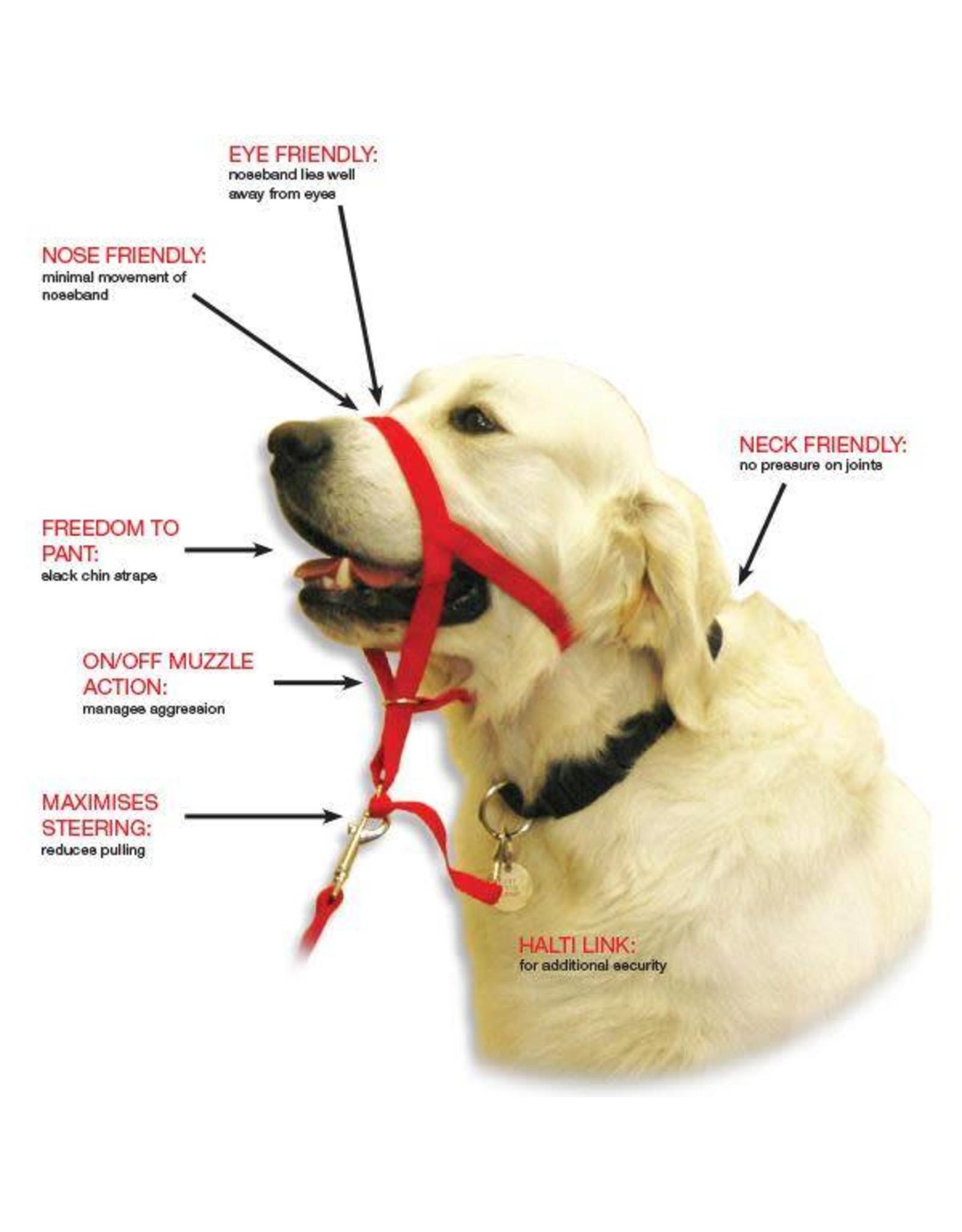 Company of Animals Halti Dog Headcollar, Red